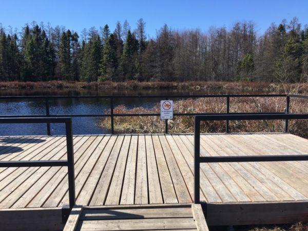 Sifton Bog Dock Trail Lookout