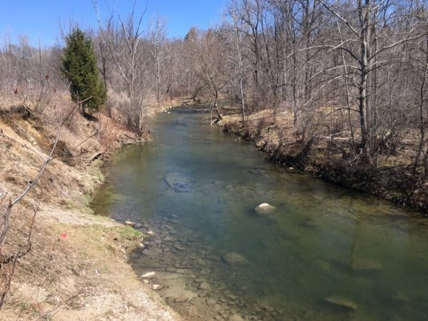 Medway Valley Forest Trail