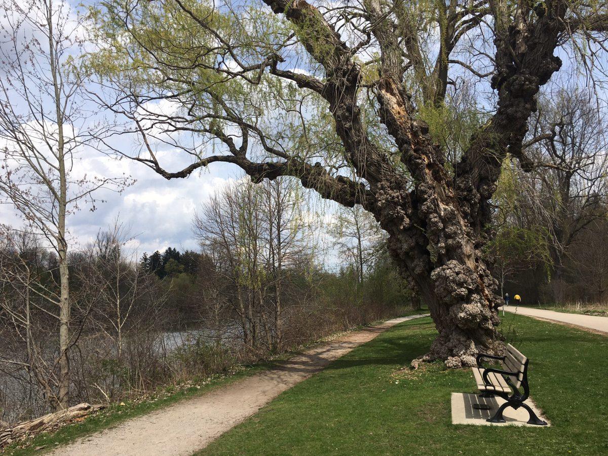 Springbank Park, London Ontario